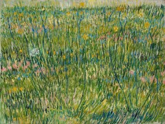 Vincent_van_Gogh_-_Patch_of_grass_-_Google_Art_Project.jpg