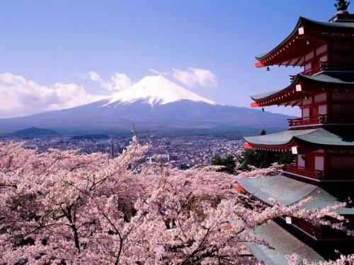 almendros-en-flor-al-fondo-el-fuhiyama-japon.jpg